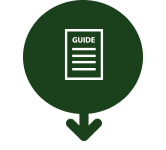 Guide infographics
